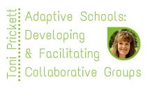 Adaptive Schools